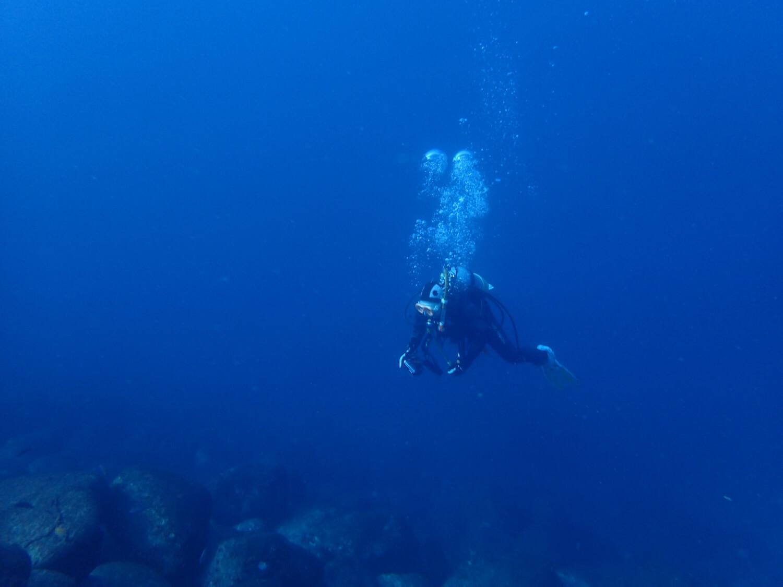 水中での中性浮力の様子